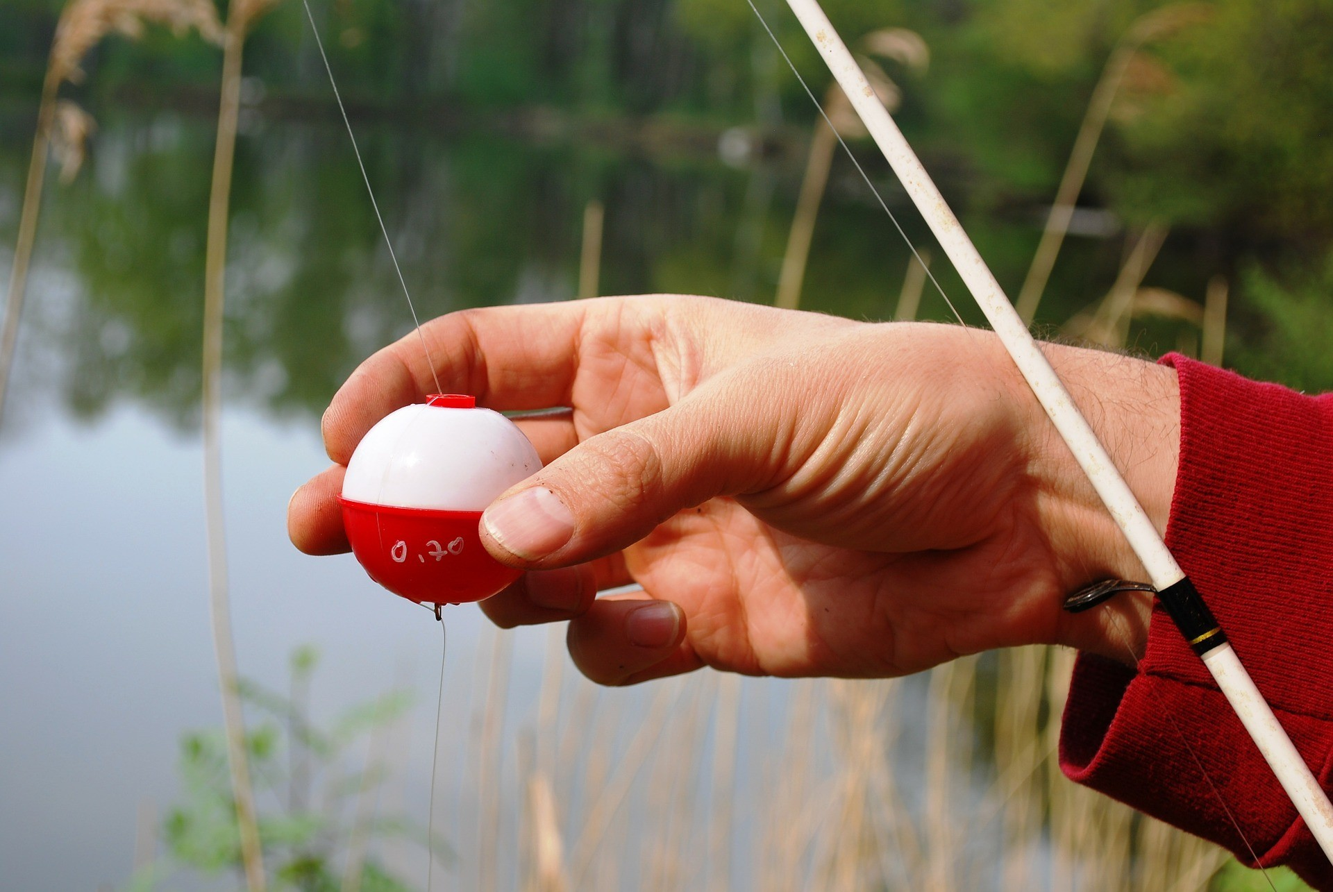 fishing-pole-332456_1920