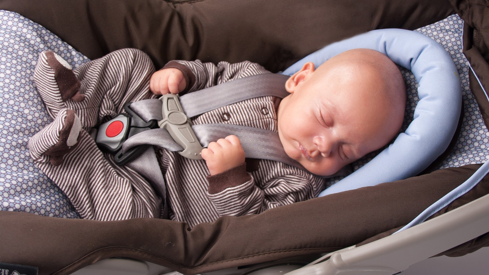 Baby Boy in Safety Seat
