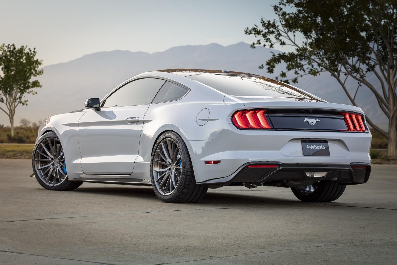 Картинки по запросу Mustang Lithium сзади