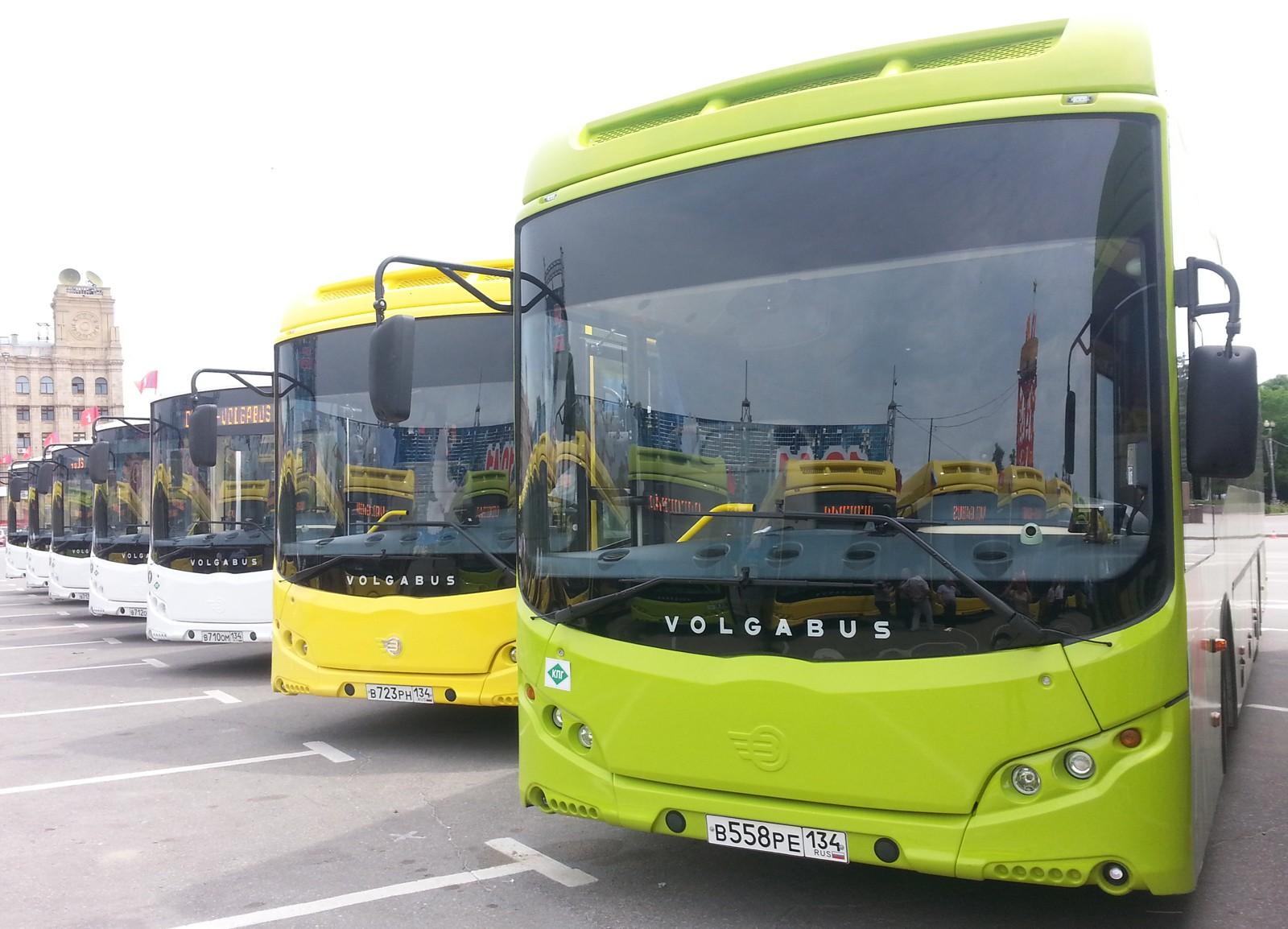 На фото: газомоторные автобусы Volgabus