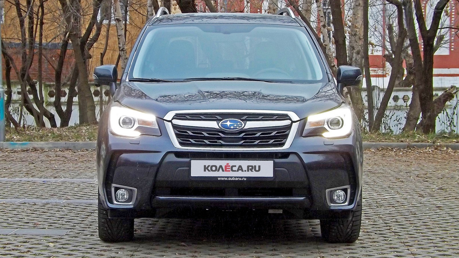 Forester_20