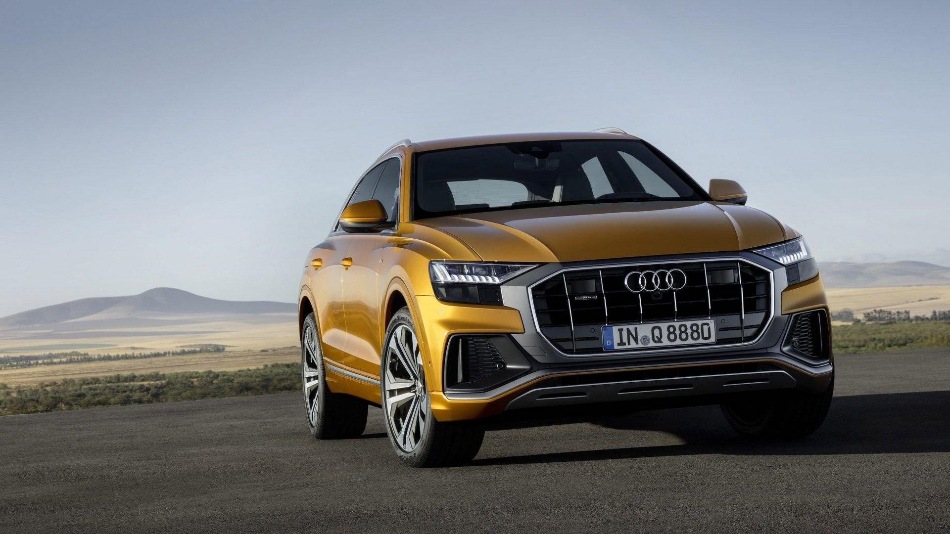 Audi-Q8-10[1]