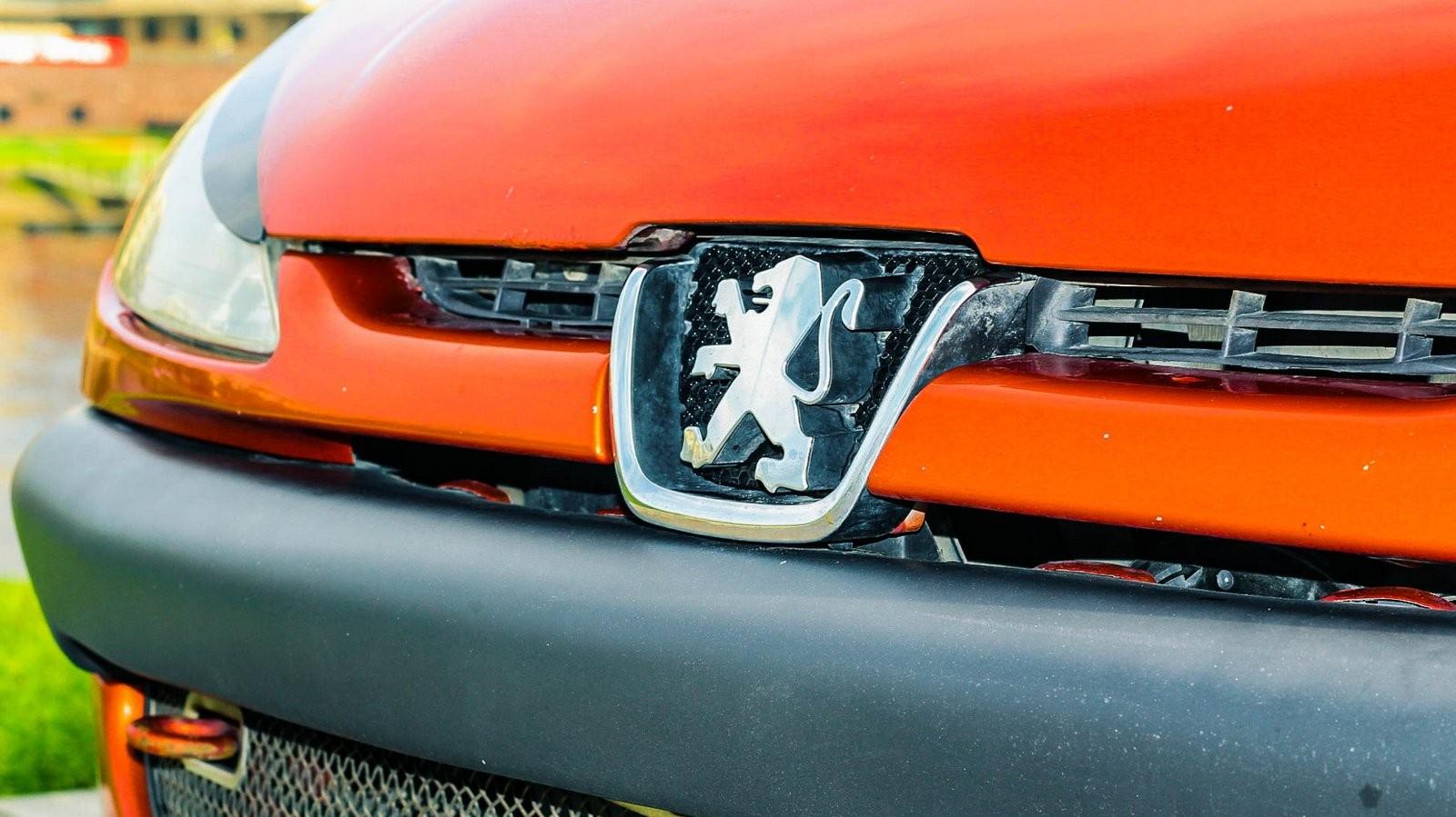 Peugeot 206 СС эмблема (2)