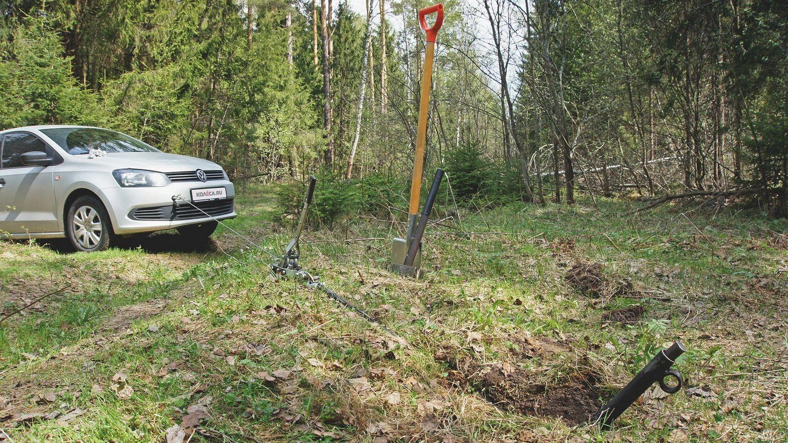 Volkswagen Polo в лесу