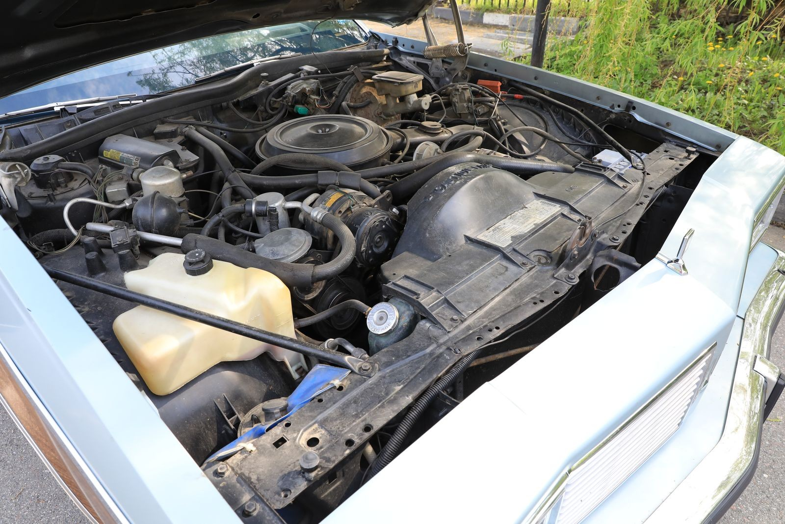По пояс деревянный: опыт владения Oldsmobile Custom Cruiser 1983 года